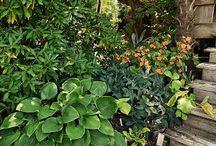 JLBG Residence Deck Garden