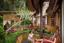 Healing & Beauty / Healing, Spa and Beauty treatments at Fivelements inspired by the Balinese way of life