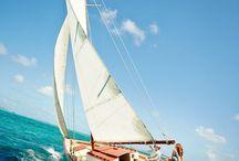 Sailing / by Christa McClellan