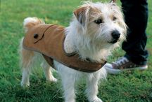 Sewing for Pets / Dog jackets &  cat beds