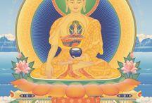 BuddhaDharma / by Count Orlok