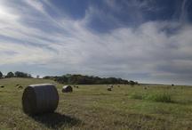 Rural South