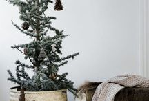 • Christmas • / To get inspire for the upcoming christmas