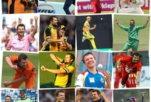 Cricket Collages / A collection of cricket collages