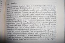 REVISTAS / Publicaciones de relatos y poemas.