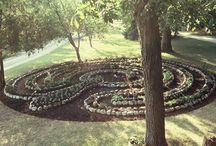 Labirinth