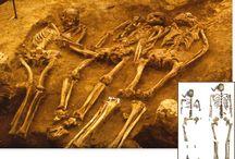archaeo-