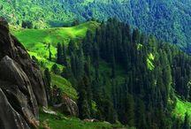 My Beautiful Kashmir! ❤️