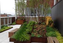 ogrody dla firm