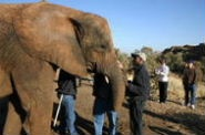 Tours in South AFrica / Some of our day tours that we offer