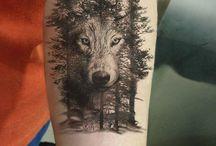 Wolf - Lobo