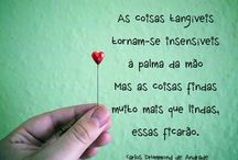Quotes ✏️