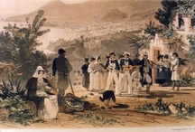 Vintage Madeira paintings by Andrew Picken