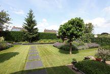 Strakke tuin inspiratie / Een kleurrijke strakke tuin door Harry Esselink Hoveniers