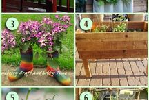 Eco Garden (DIY) / by Ninamiya Chuu