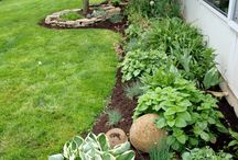 side yard plant flower and herb garden