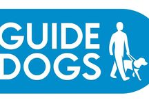 Guide Dogs / I volunteer for Guide Dogs and am very passionate about it, so an album dedicated to any events I take part in and some official pictures added in as well.
