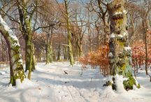 téli tájak