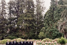 Green Wedding / by Wedding Party