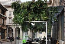 Piazza Garden Retail Design