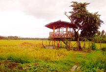 Lupon, Davao Oriental Philippines