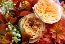 Bouquets for the Gals / by Melissa Margotta