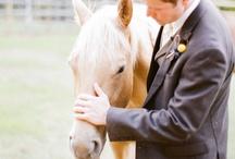 RoK Man & Bride's Best Friend / Cute ways to include animals in weddings