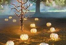 FALL-O-WEEN / Fall & Halloween Decor