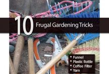 Frugal Gardening Ideas / Trying to learn how to garden on the cheap