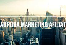 Noutati / Noutati Marketing Afiliat