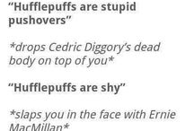 Why I'm Proud To Be A Hufflepuff
