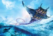 Sea world rides / by Christie Hancher