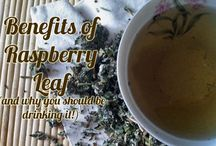 Tinctures, Tea's, Salves and more / Making stuff...from nature