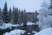 Winter in Southern Norway / The winter in Southern Norway is perfect for skiing, both downhill and cross country.
