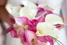 Pink Calla Lily Wedding
