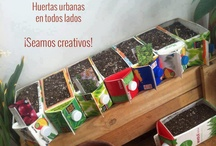 huertos urbanos / by Maria Villar