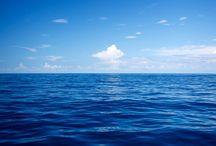 Natura tra mare e cielo