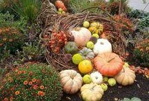 Dekorace podzim