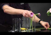 Creative Flower Video