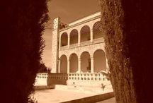 EL PALACIO DEL INFANTADO ( MUSEO PROVINCIAL ) DE GUADALAJARA /  * = imagen capturada de internet