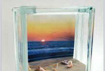Seas shells
