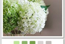 Colour palettes - wedding