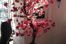 Bloesembomen / Roze bloesemboom in huiskamer