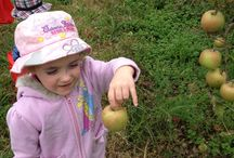 Kids and agriculture / Students love learning about farming, no matter what age.