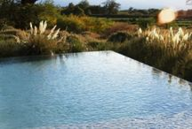 Garden: Pools & Water  / by Laara Copley-Smith Garden Design