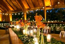 Wedding Inspiration / Our favorite ideas from decor and themes to venues and food!