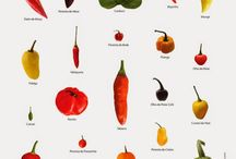 Pimentas e temperos.