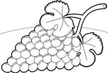 σταφύλια-τρύγος