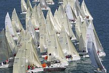 Melges 24 TOP