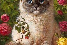 flower in cats
